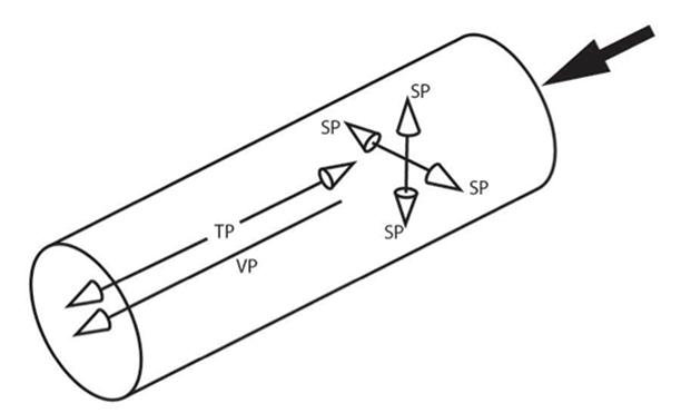 Figure 2 - Article AA - Photo C