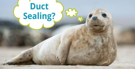 What is Duct Sealing?